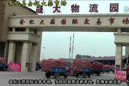 15年大蒜收购旺季实录1—记杞县金杞大蒜市场 ()