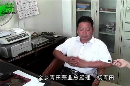 2015年大蒜出口形势调查 ()