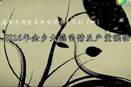 2016年金乡大蒜苗情及产量预估 ()