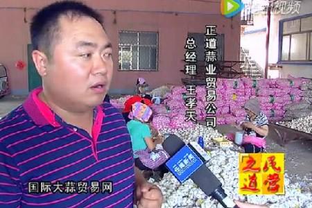 电视台《民营之道》专访国际大蒜贸易网 ()