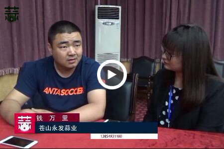 大蒜行业诚信经营的代表——钱万里 ()