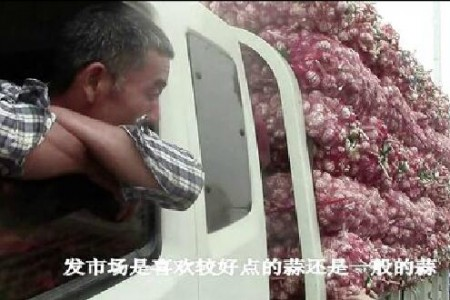 """蒜都考察侧记(市场篇)—""""老石说市""""第四期 ()"""