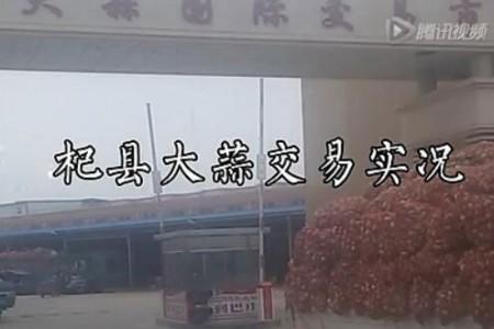 河南杞县大蒜交易实况 【拍客:杞县辉哥】 ()