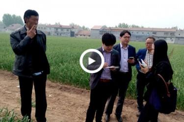 韩国客户赴济南商河考察合作 【拍客:商河张青】 ()