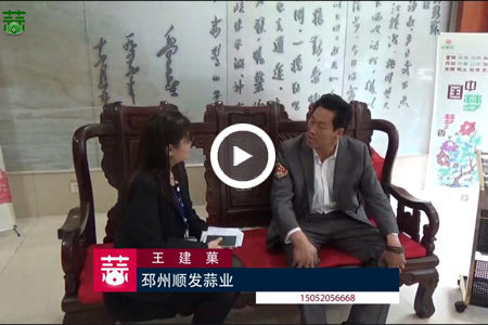 2016大蒜行业十佳人气经纪人——王建菓 ()