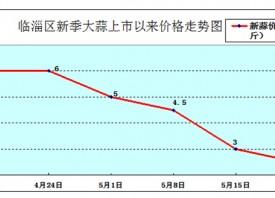 淄博:大蒜价格持续大幅回落 ()