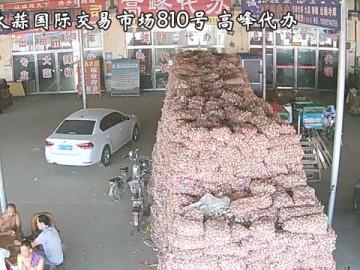 金乡大蒜国际交易市场高峰代办