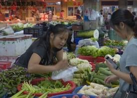 蔬菜价格再次进入下行通道