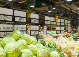 大蒜批发价格同比下跌超六成 ()
