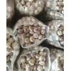 长期储存蒜薹 网袋包装蒜片 蒜油