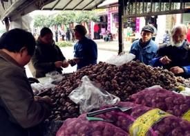 新鲜大蒜 10块3斤 ()