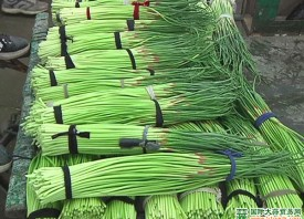 莱芜:蒜薹减产蒜农笑不出来 ()
