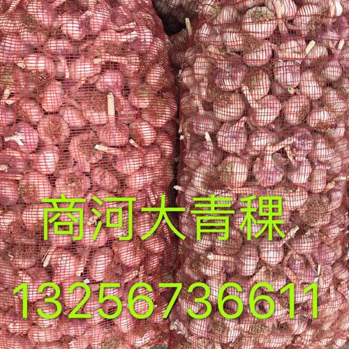 QQ�D片20180614105753