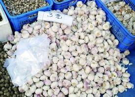 哈尔滨市:蒜价跌入低谷 ()