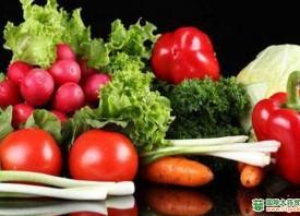 """常州:蔬菜价格整体""""发烧 ()"""