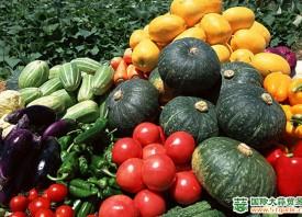 北京岳各庄市场蔬菜价格上涨 ()
