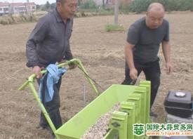 广水市:机械化助力大蒜产业腾飞 ()