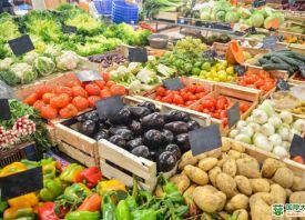 郑州:上周蔬菜价格小幅下跌
