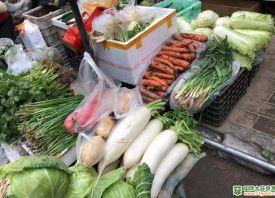 武汉:大路菜涨幅最高超六成 ()
