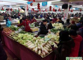 北京新发地:节后菜价高烧持续