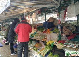 节后济南蔬菜价格上涨