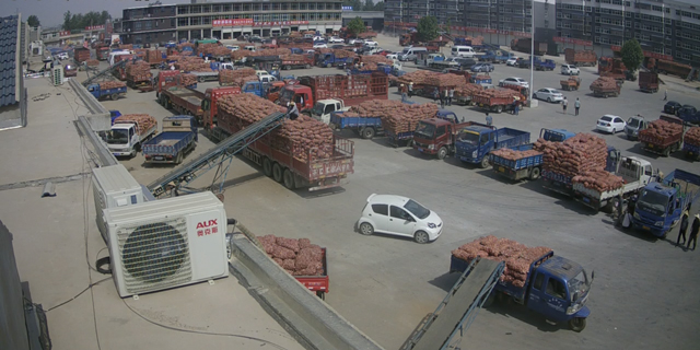 邳州碾庄黄滩桥大蒜市场