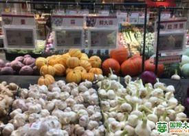 德州:大蒜价格飙升 一头蒜9毛钱 ()