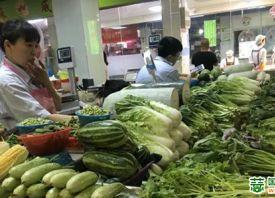 浙江省:台风过后 吹高的菜价开始回落