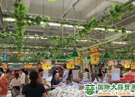 滨州:绿叶菜身价抬高