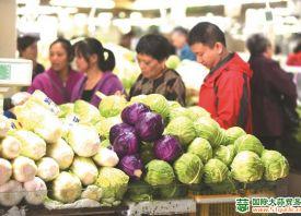 无锡:供给稳定 菜价亲民