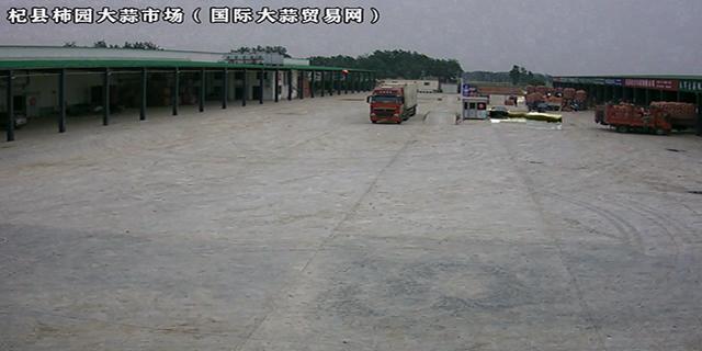 杞县柿园大蒜市场