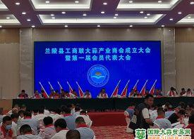 兰陵县工商联大蒜产业商会成立 ()