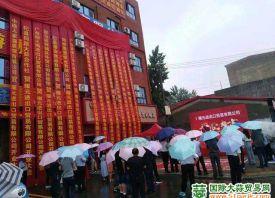 中牟:东关村市场正式运营 ()
