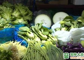 上海金山蔬菜价格普遍上涨