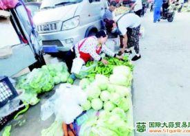 """潍坊:菜价进入""""两元区"""""""