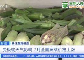 7月:全国菜篮子价格指数上涨