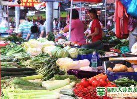 东莞:暴雨过后 菜价攀升