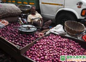 印度:洋葱减产禁止出口 ()