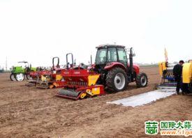 广饶:大蒜种植进入机械化时代 ()