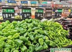 潍坊:蔬菜备货充足应对寒潮 ()