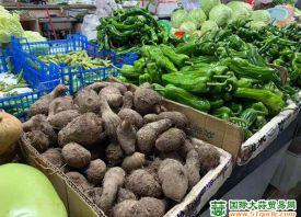 九江:油菜、青椒涨幅较大 ()