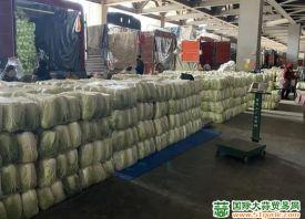 西安:储备冬春蔬菜 平抑市场价格 ()