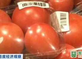 北京:运输成本增加 推高菜价 ()