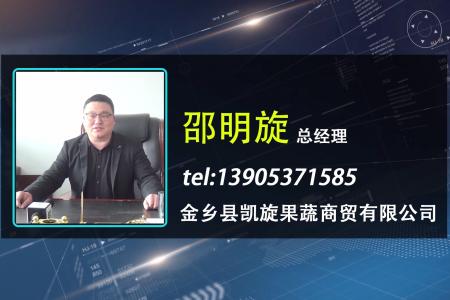 名企专访—金乡县凯旋果蔬贸易有限公司