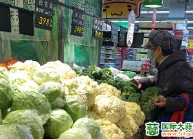 济宁:节日效应减退 菜价回落