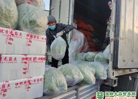 北京蔬菜价格下降 南北菜齐上市
