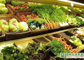 陕西蔬菜连续四周降价