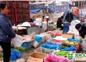 太原蔬菜价格持续下降 ()