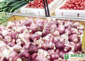 潍坊:鲜蒜量足价优 ()