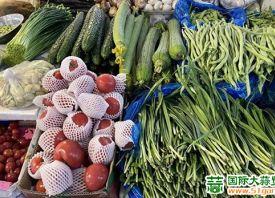 上海:供应增加 菜价大幅跳水 ()